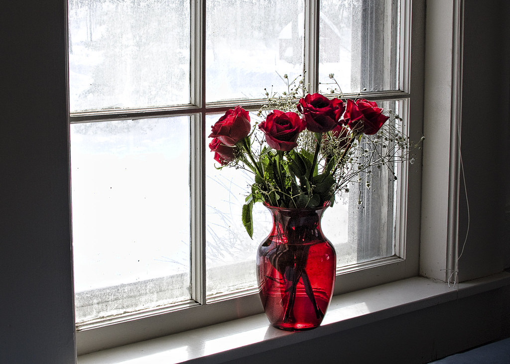 Roses In A Window Red Roses Really Pop In A Snowy Window