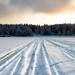 Ski-doo tracks