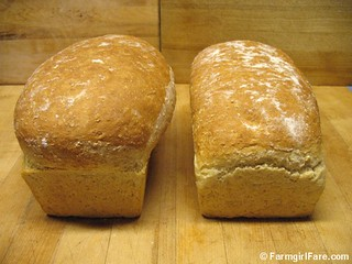 Same amount of bread dough in two different sizes of loaf pans | by Farmgirl Susan