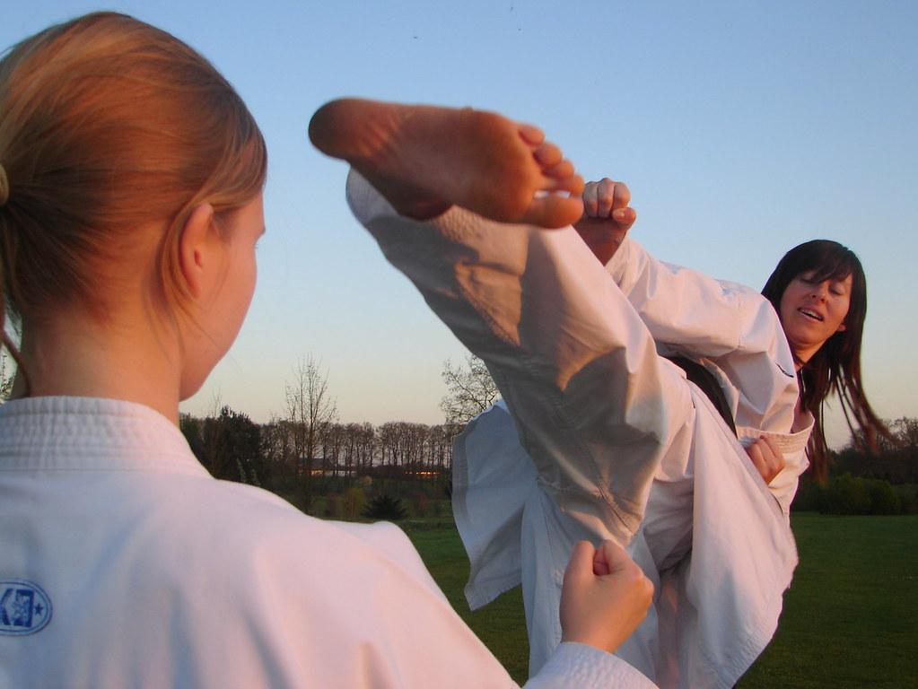 Tae kwon do kicks - 2 part 10