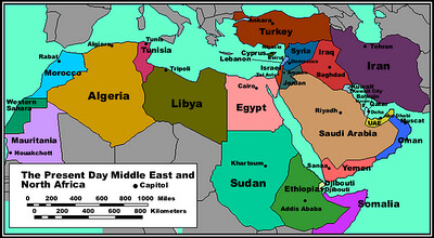 The World's Muslims: Religion, Politics and Society