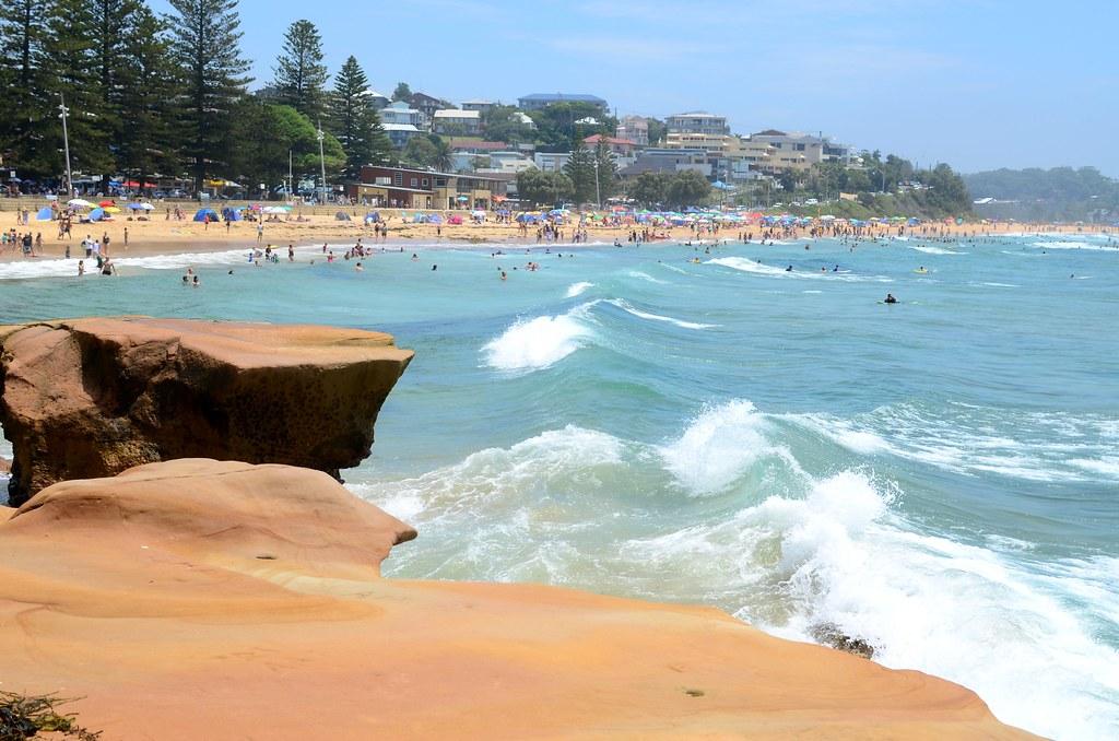 Australia Day - Terrig...