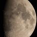 110212 The Moon