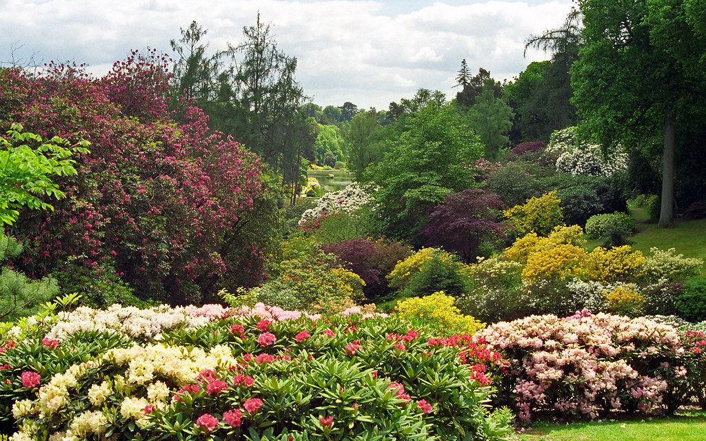 Leonardslee Gardens West Sussex Uk Rh13 6pp Landscape