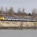 A class 450, Gideons Green, 7 Jan 2010