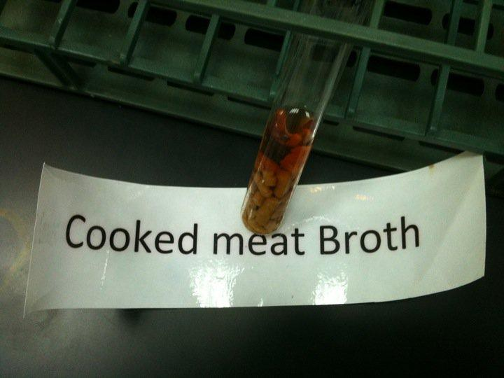 The Medium Is Message >> Cooked meat Broth for Clostridium | It is an enriched medium… | Flickr