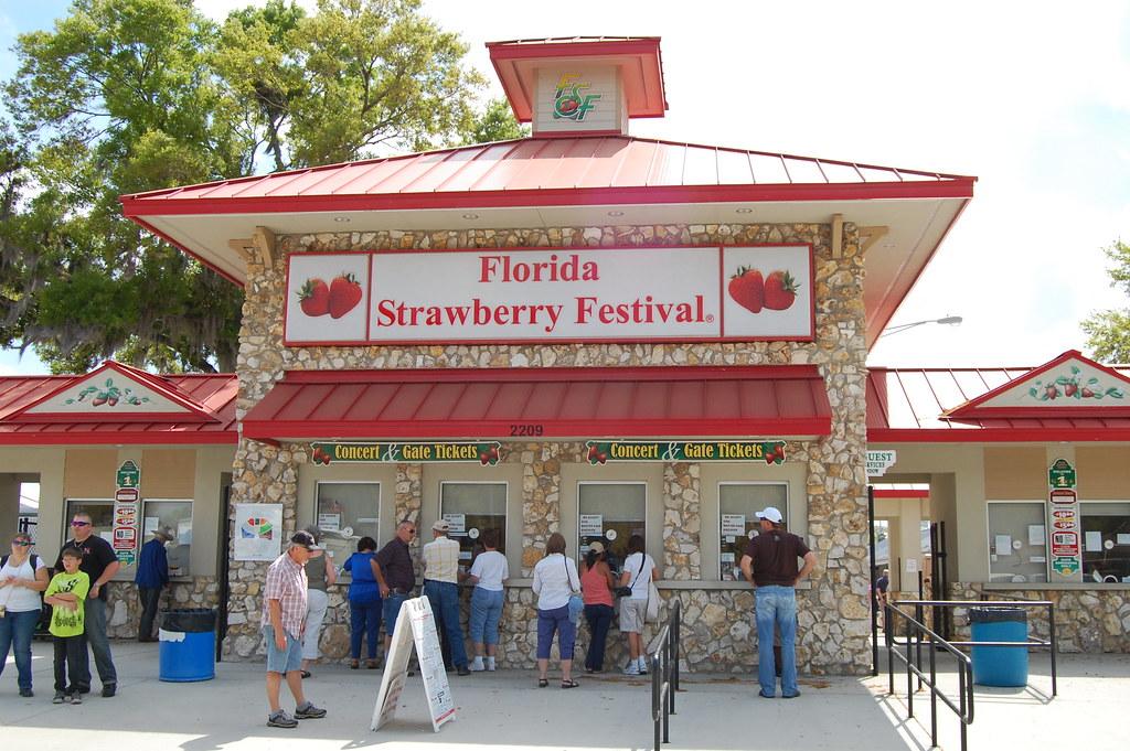 Florida Strawberry Festival Funnel Cake
