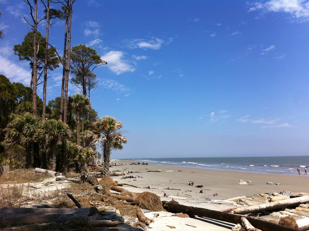 Hunting Island State Park Virtually Untouched Coastal Fore Flickr