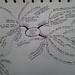 Roberto's Mind Maps