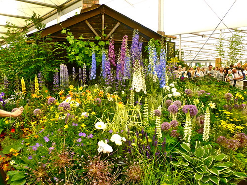 Chelsea Flower Show 2011 | by HerryLawford