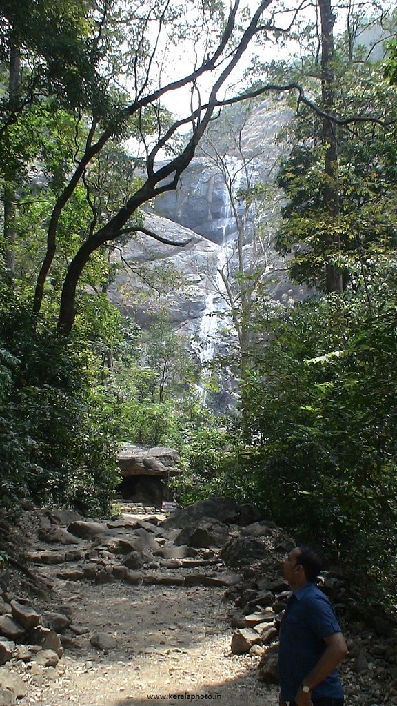 Waterfall In Kerala A Famous Waterfall In Forest In Kerala Flickr