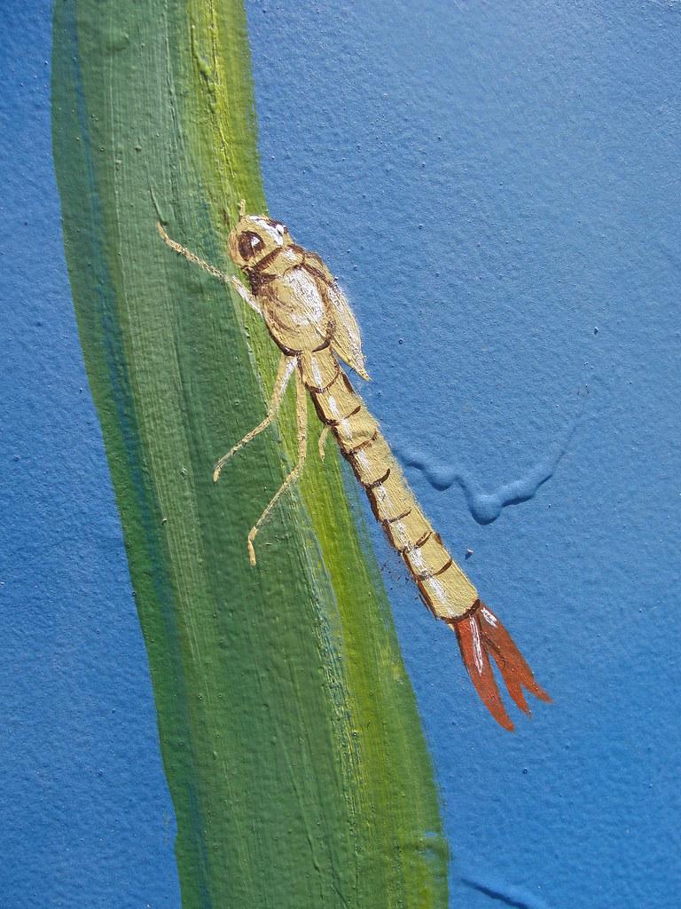 Kern river hatchery mural 6 california department of for California department of fish and wildlife jobs