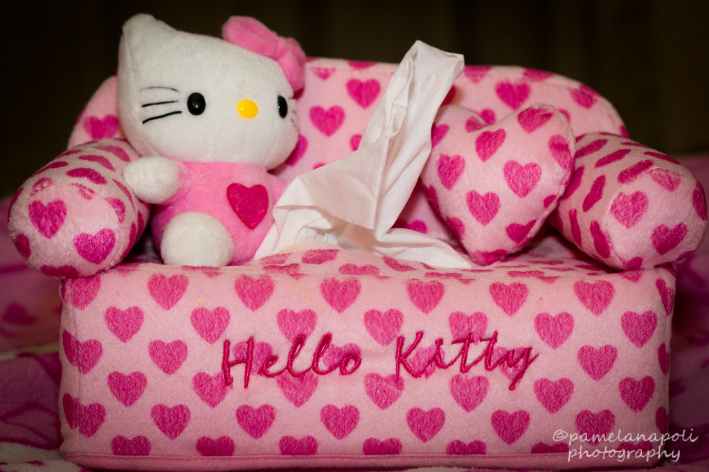& Hello Kitty Heart Couch Tissue Box Cover | Day 2 - Hello Kitu2026 | Flickr Aboutintivar.Com