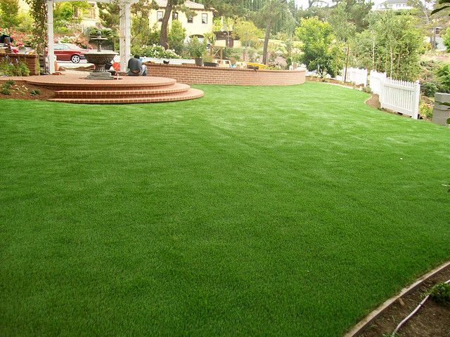 Fake Grass For Your Backyard : Recent Photos The Commons 20under20 Galleries World Map App Garden