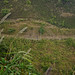 Tara Climbing Lao Mountain Road (If You Look Really Hard)