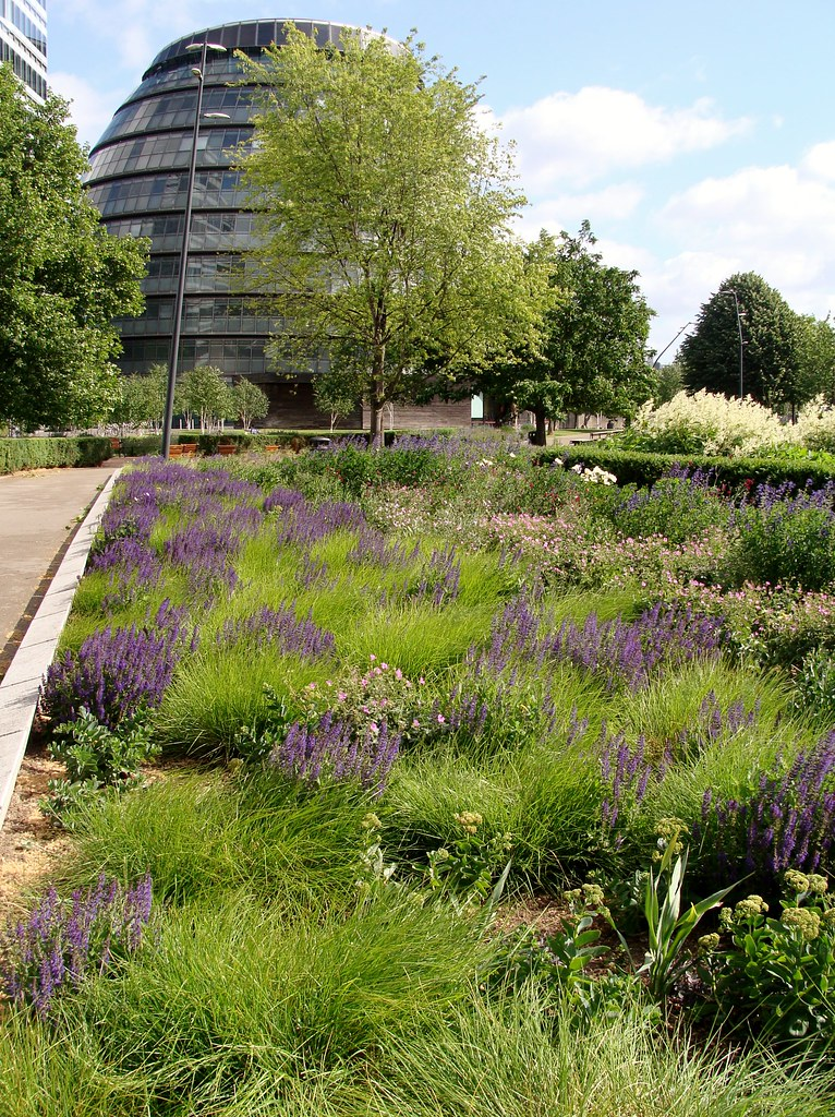 Piet oudolf planting potters fields london casiopoke for Piet oudolf planting schemes