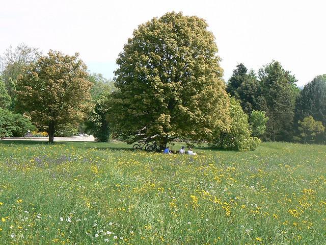 D jeuner sur l 39 herbe explore cmic blog 39 s photos on for Vaisselle dejeuner sur l herbe