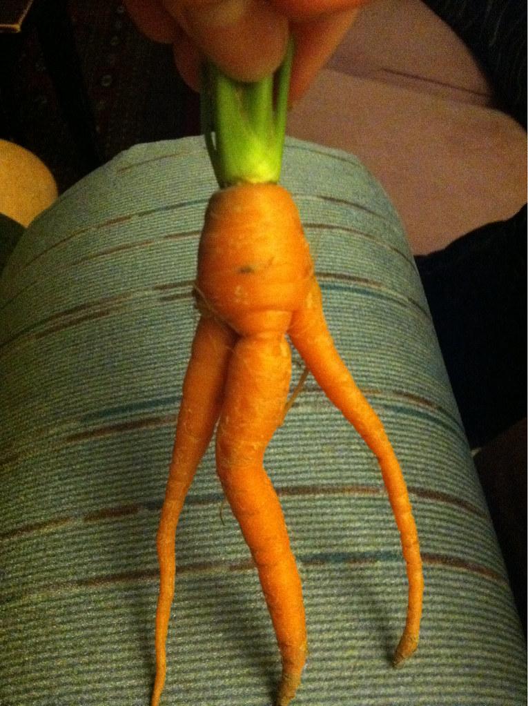 в попе морковка фото № 48465 загрузить