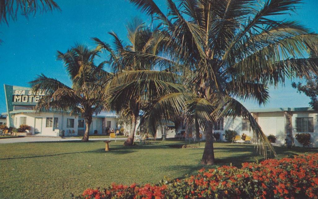 Sea Shell Motel Naples Florida Naples Florida Us 41