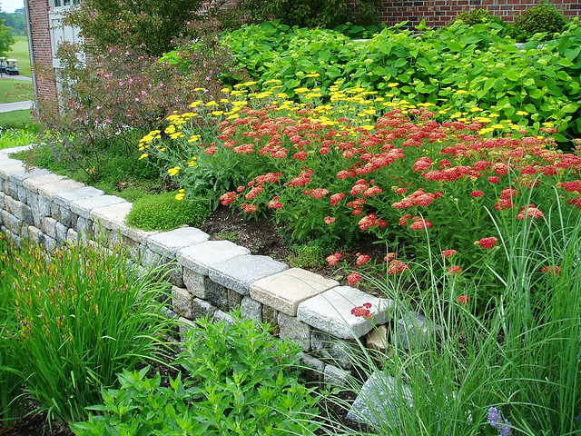 English garden design flickr photo sharing for English garden designs