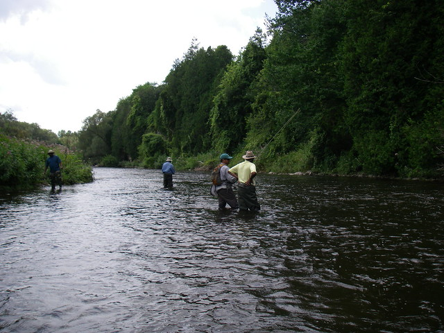Teaching fly fishing on the grand river flickr photo for Grand river fishing