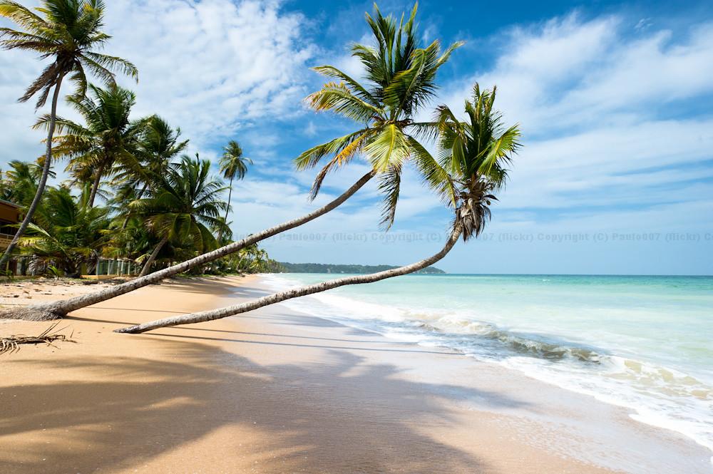 Beach House Trinidad