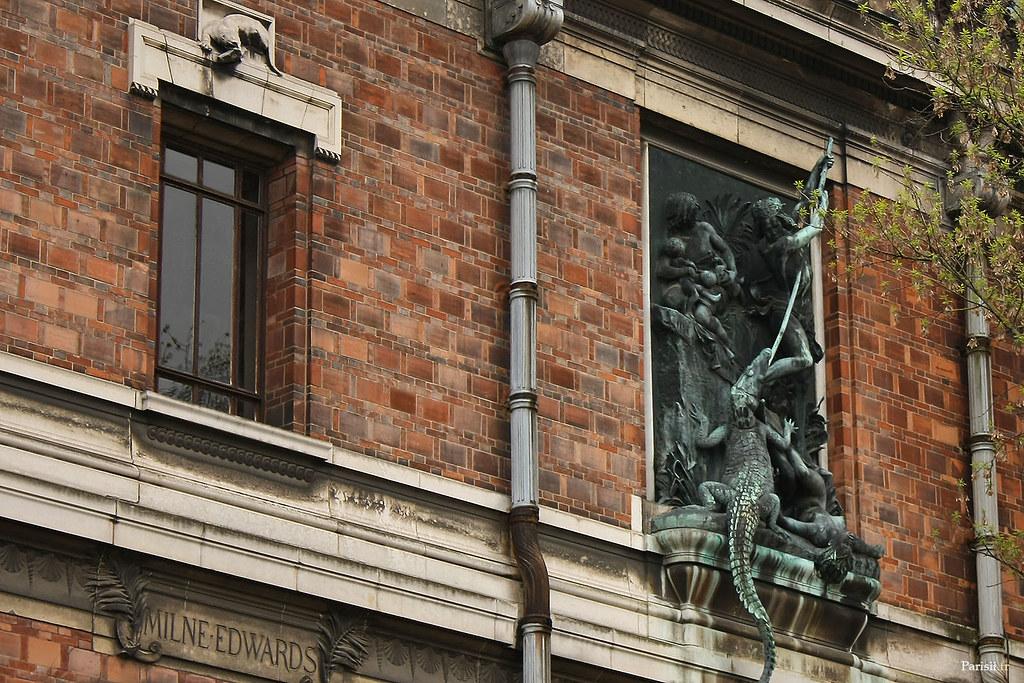 La décoration extérieure de la Galerie de paléontologie et d'anatomie comparée est incroyable, avec cette statue d'un homme luttant contre un crocodile!