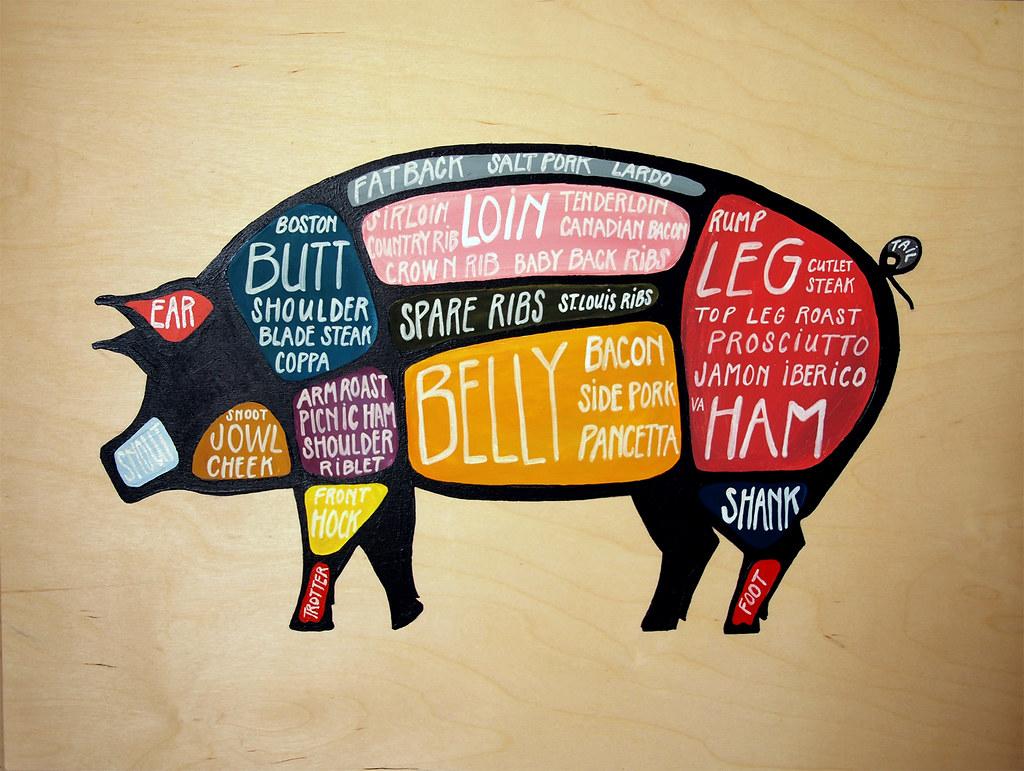 Elk Meat Diagram