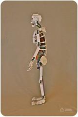 Lego Anatomy Skeleton: Side