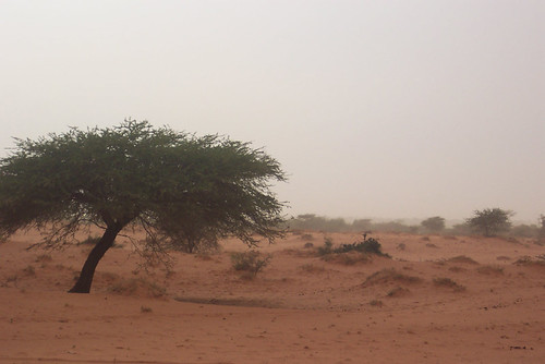 Climate Change in Sudan | by UNDP Sudan