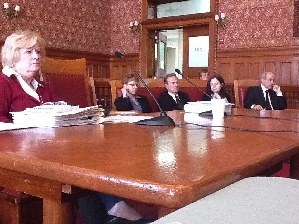 Cambridge city staff at finance committee hearing saul - Lichternetz fa r tannenbaum ...