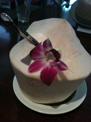 Coconut Water | by yougrowgirl