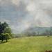 Summer Pasture I