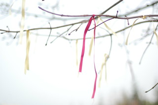 ribbons | by this lyre lark