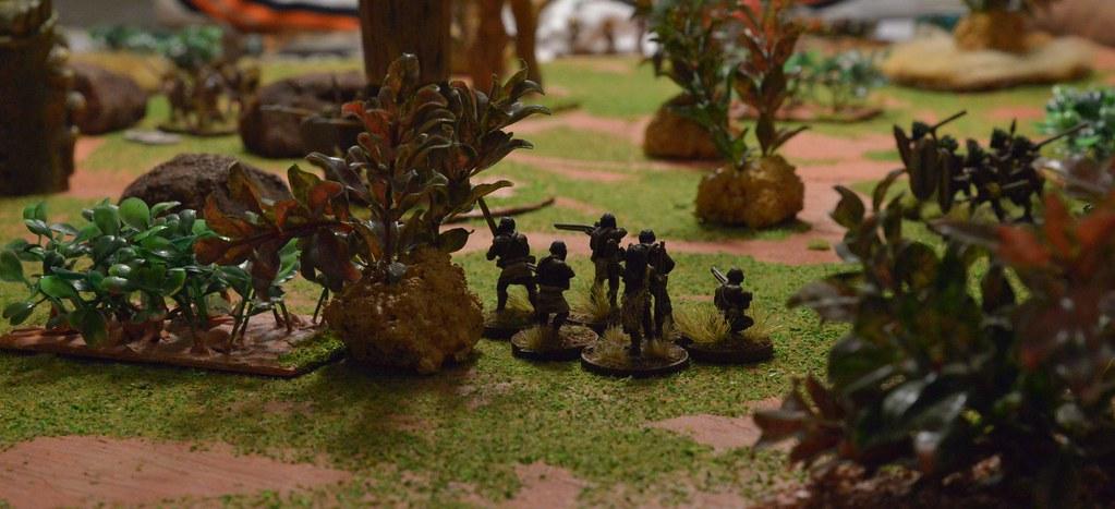 Les batailles du coté de Bourges. 29963243401_a6b6445356_b