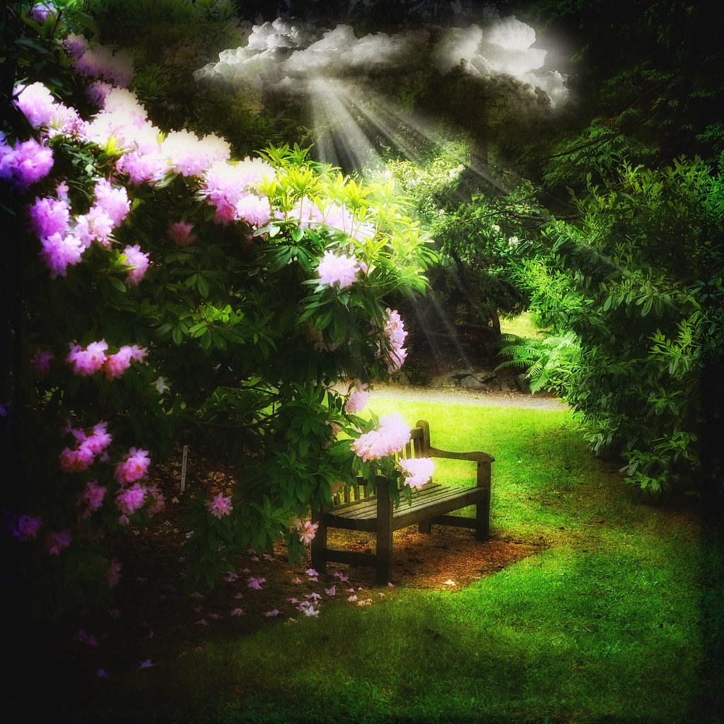 Garden Of Eden Landscape: In The Garden Of Eden
