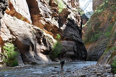 """""""The Narrows"""" Mt Zion National Park by scb.mypics"""
