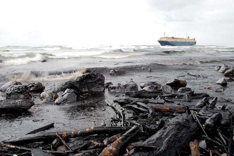 中央研究院生物多樣性研究中心廖運志 2008年11月12日,擱淺於北海岸石門海岸的巴拿馬籍貨輪「晨曦號」,洩漏的油污造成長達3公里海岸遭受嚴重污染。