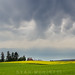 Mammatus Clouds, Boiling Sky over the Palouse