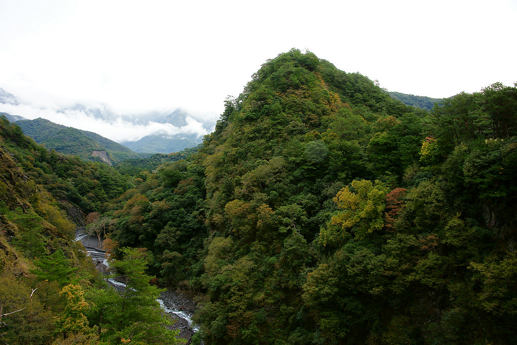 8 Tips for Planning a Trip to Taiwan with   PeiPeiHaoHao