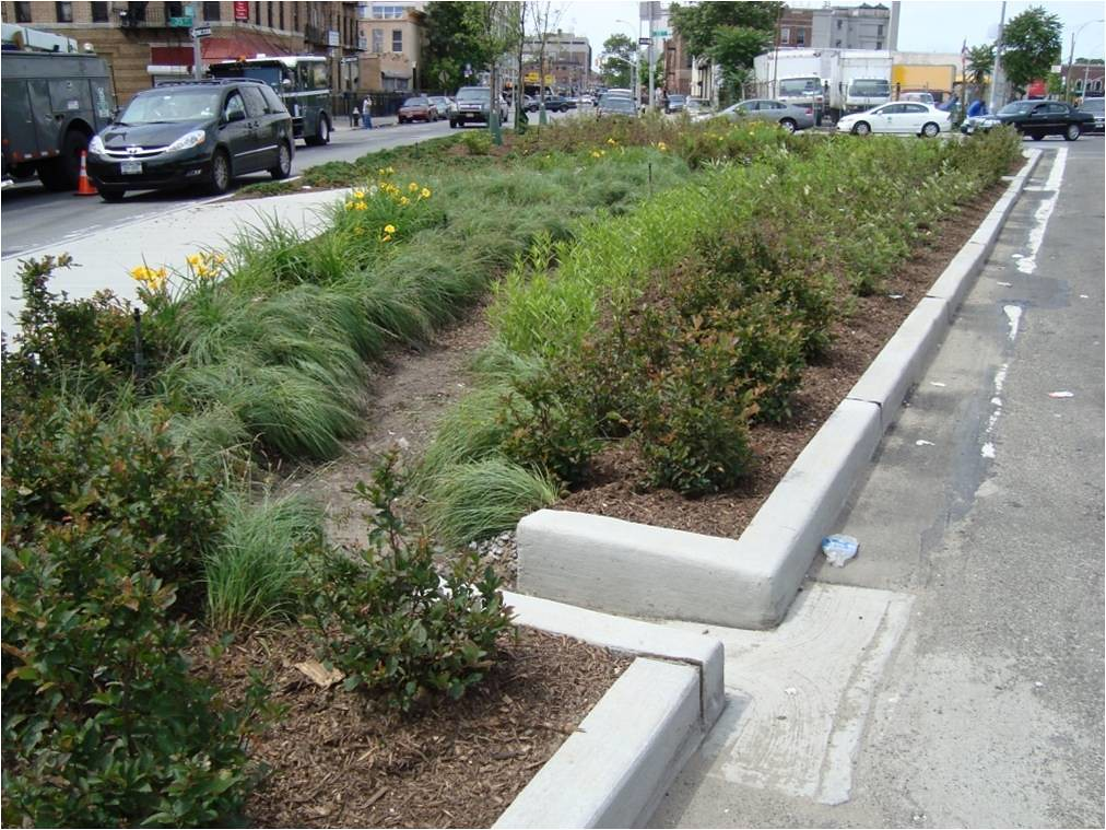 Bioretention And Curb Cut Curb Cut To Direct Water Into