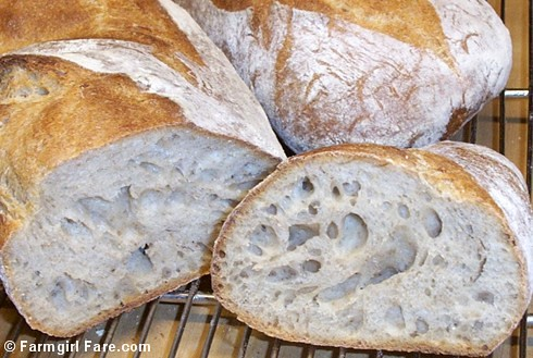 Freshly Baked Pain au Levain | by Farmgirl Susan