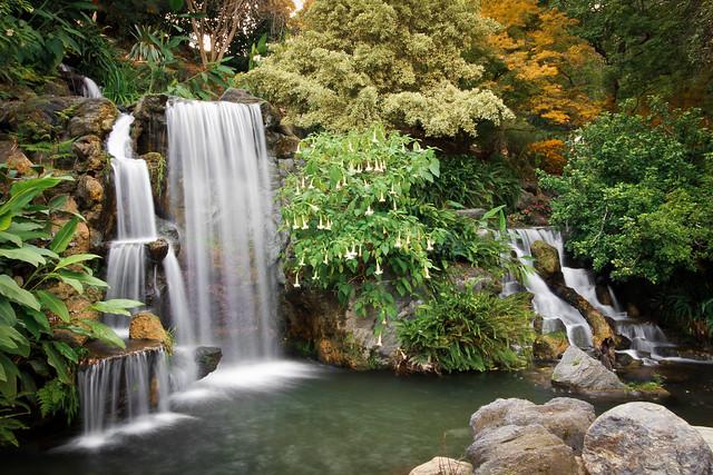 Los Angeles Arboretum Waterfalls Flickr Photo Sharing
