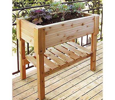 Raised Vegetable Beds Gardening Beds Benefits Of