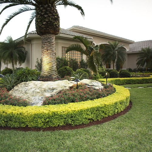 Central Florida Landscaping Ideas Florida Landscaping Ideas