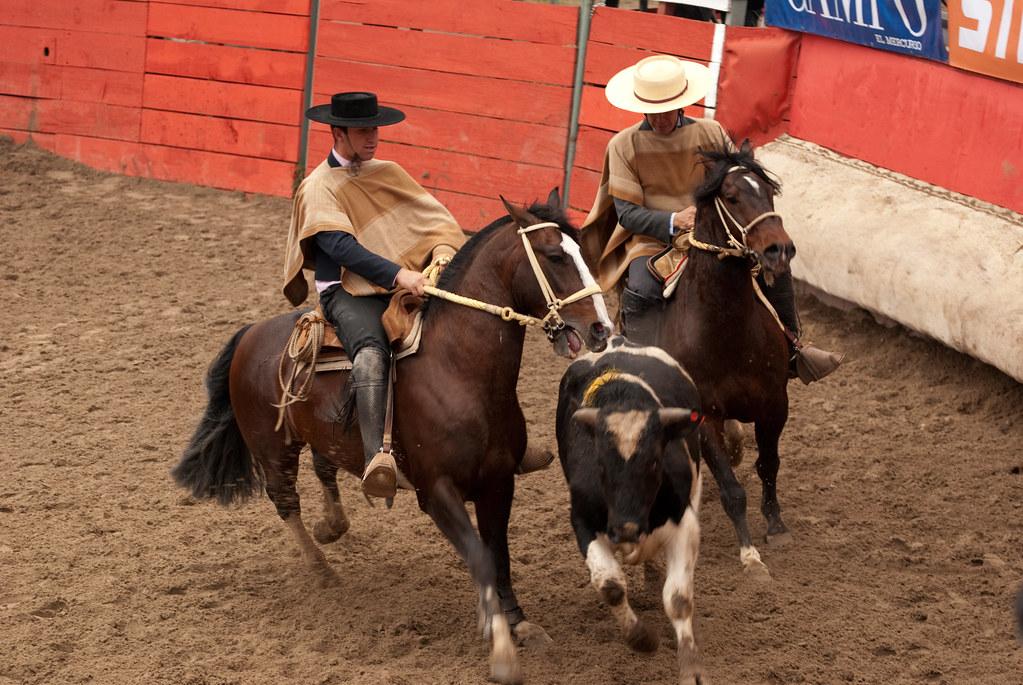 Rodeo Chileno - 18 de Septiembre   Ricardo Luengo   Flickr