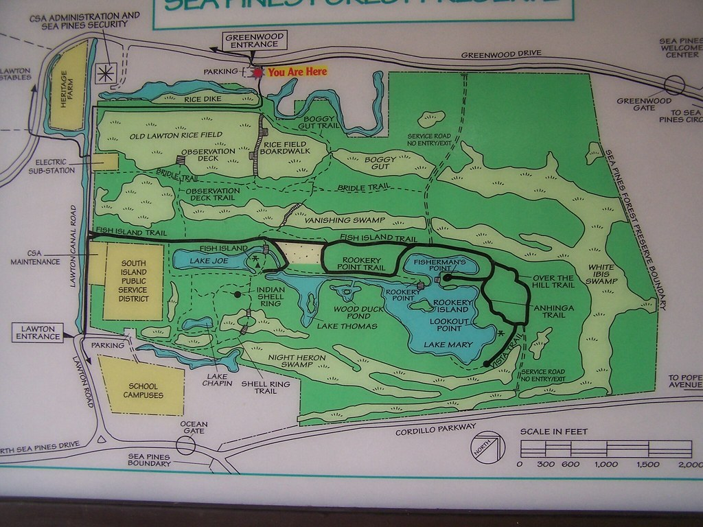 Map Of The Island Forest