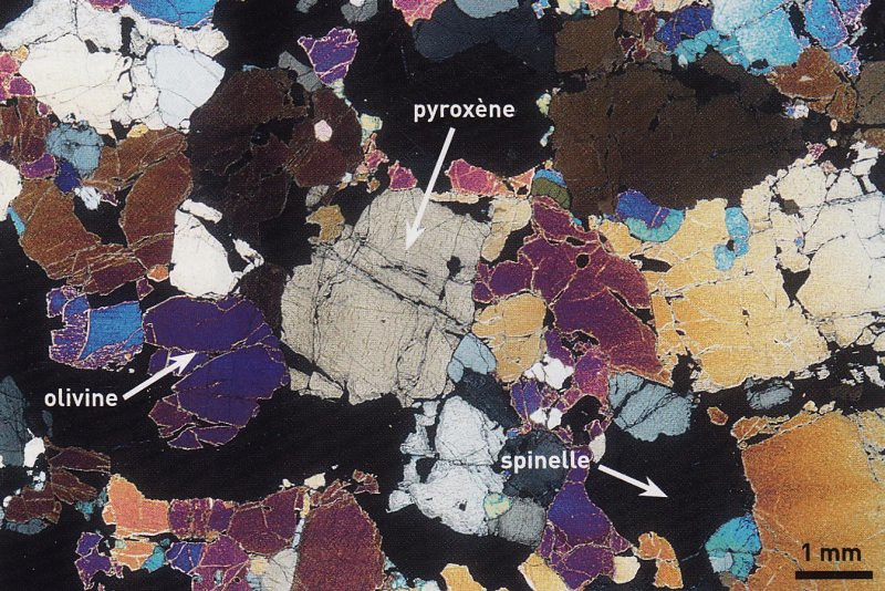 What Is Svt >> peridotite (LPA) | Roche magmatique plutonique à texture gre… | planete-svt | Flickr