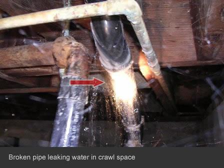 Waste Line Leak Leak in Waste Line