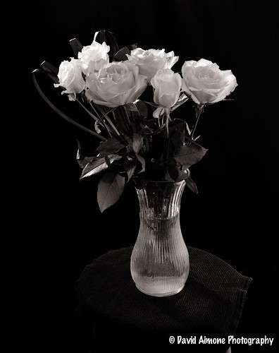 Roses In Vase | by DKAIOG http://www.aimonephoto.com